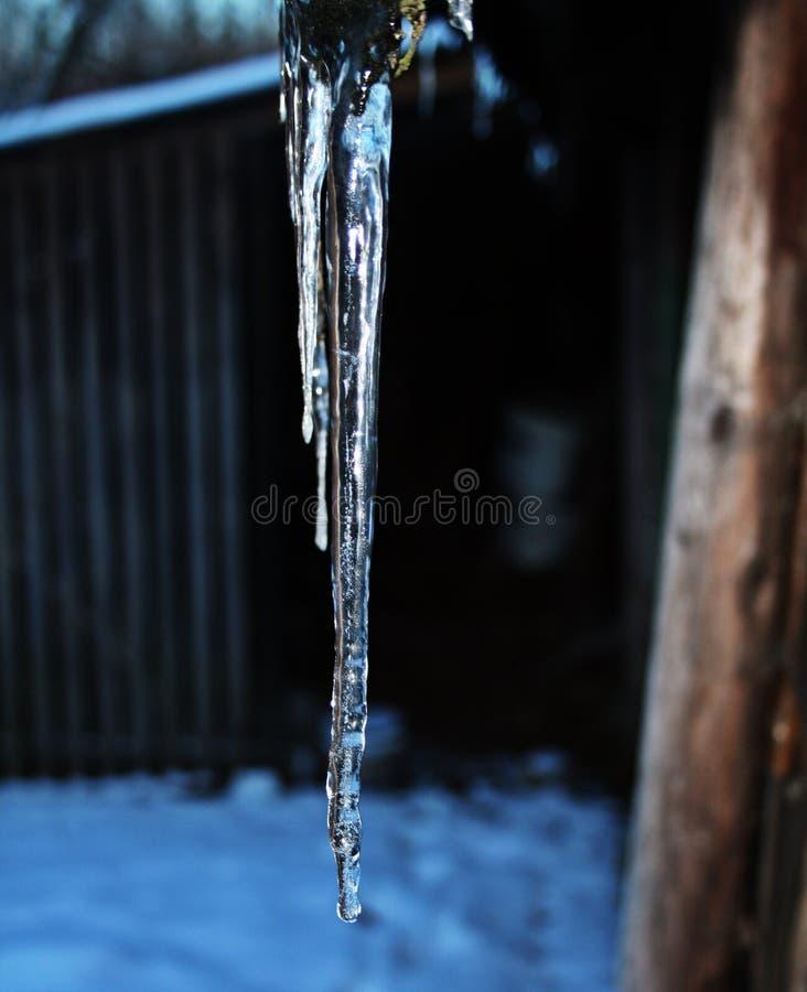 Banquisa de gelo imagens de stock royalty free