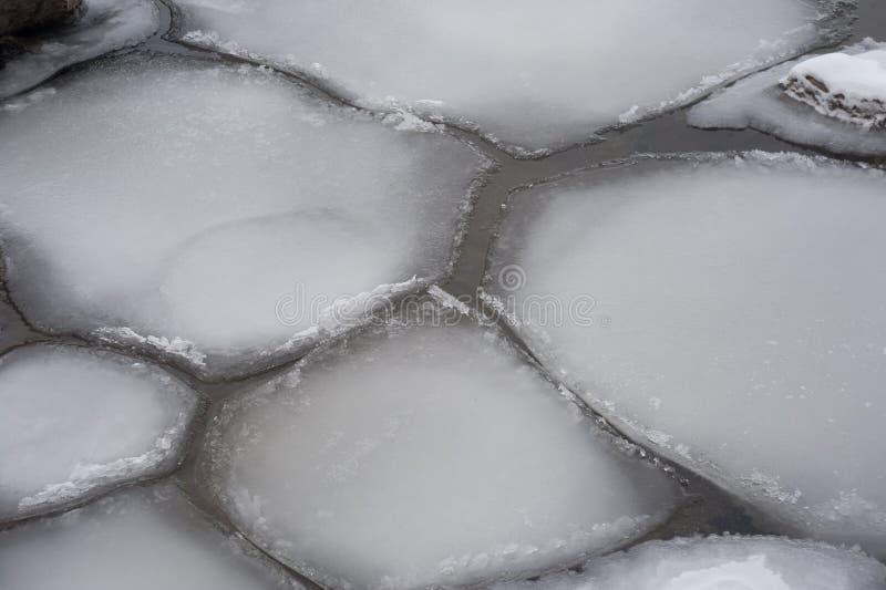 Banquisas de gelo irregulares que flutuam na superfície da água foto de stock royalty free