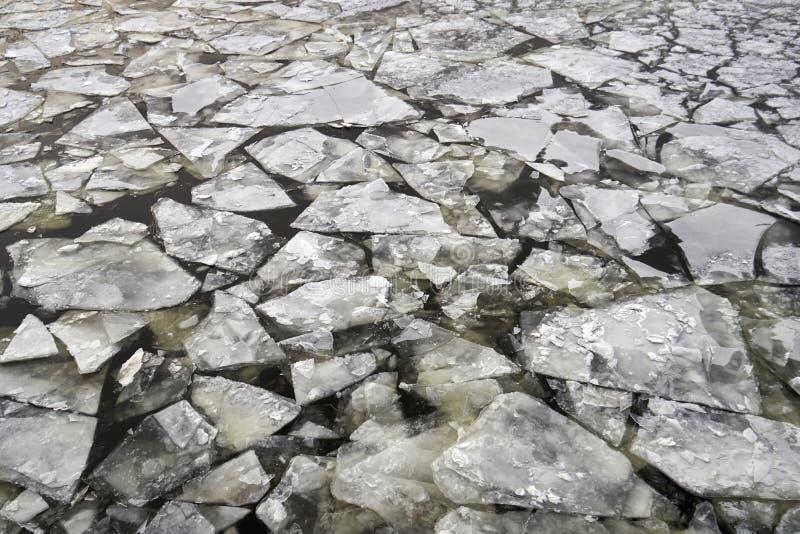 Banquisas de gelo na água do rio imagens de stock royalty free