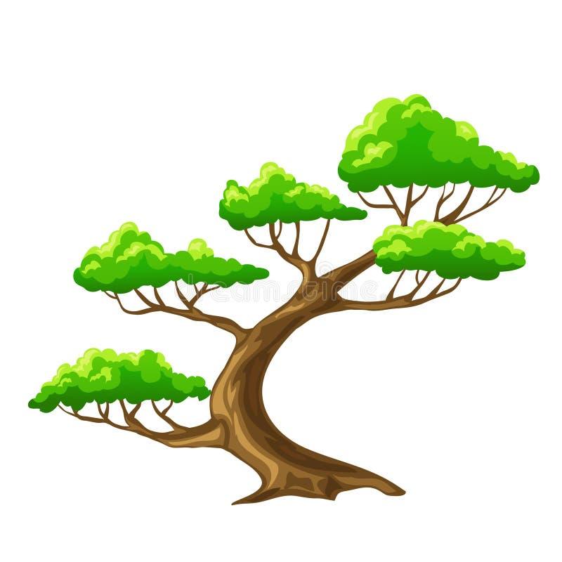 Bansai da árvore dos desenhos animados com fundo branco