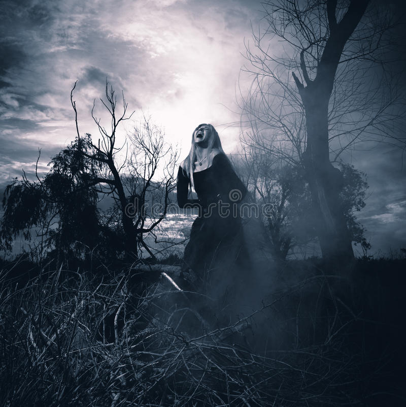 Banshee. Fantasy style portrait of a howling woman, monochromatic shot stock images
