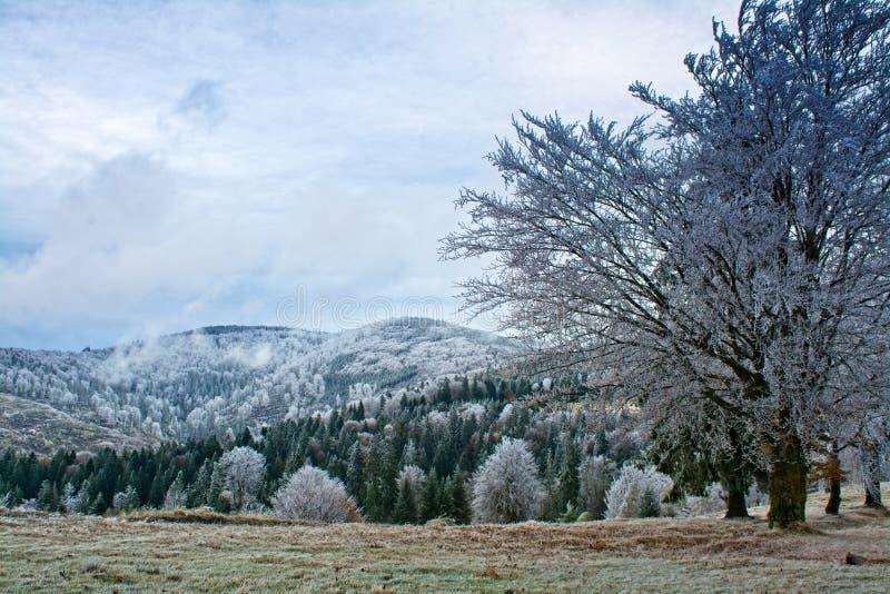 bansko Bulgaria krajobrazowa gór zima obraz stock