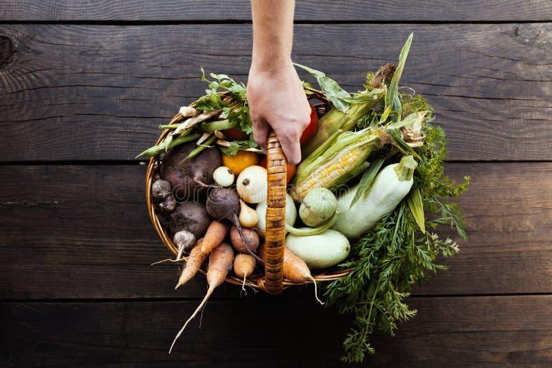 Banta matnäring, vegetariskt ingrediensbegrepp L?gt - kalorimat fotografering för bildbyråer