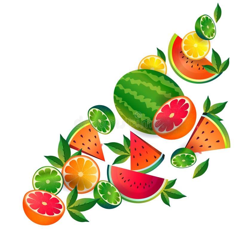 Bantar orange frukt för vattenmelonlimefrukt på vit bakgrund, sund livsstil eller begreppet, logoen för nya frukter vektor illustrationer