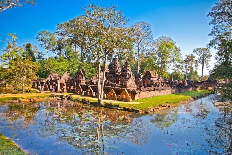 Banteay Srei świątynia blisko Siem, Przeprowadza żniwa, Kambodża zdjęcia royalty free