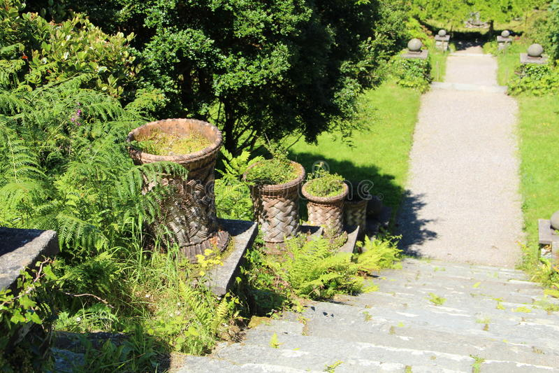 Download Steps At The Back Of Bantry House And Gardens, Bantry, West Cork  Ireland