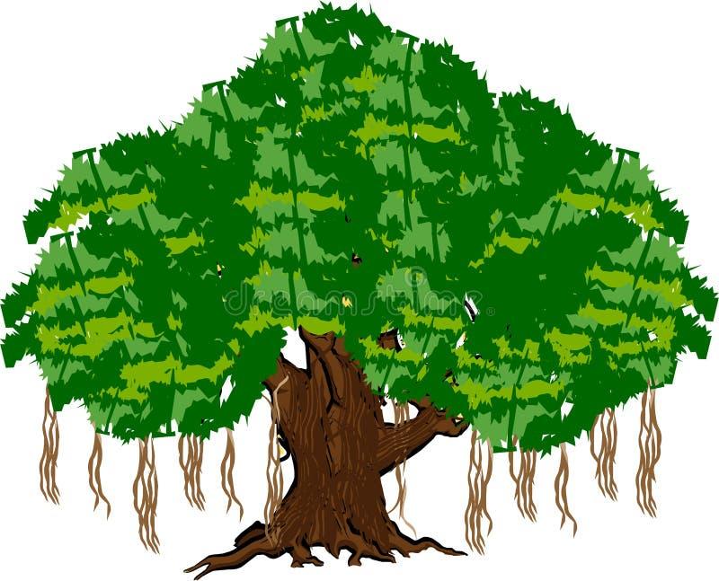 Banyanträd royaltyfri illustrationer