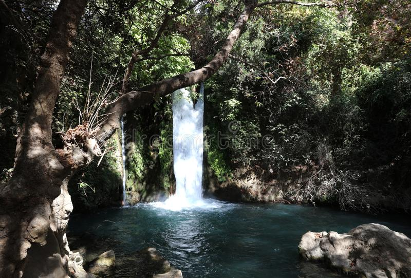 Banyas Nature Reserve in the upper Galilee. Israel royalty free stock photography