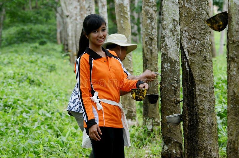 Banyuwangi stock photo
