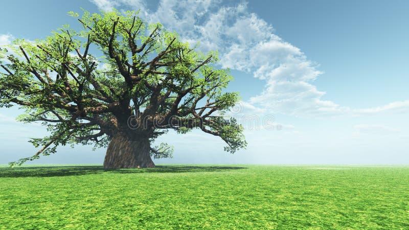 Baobab impresionante stock de ilustración