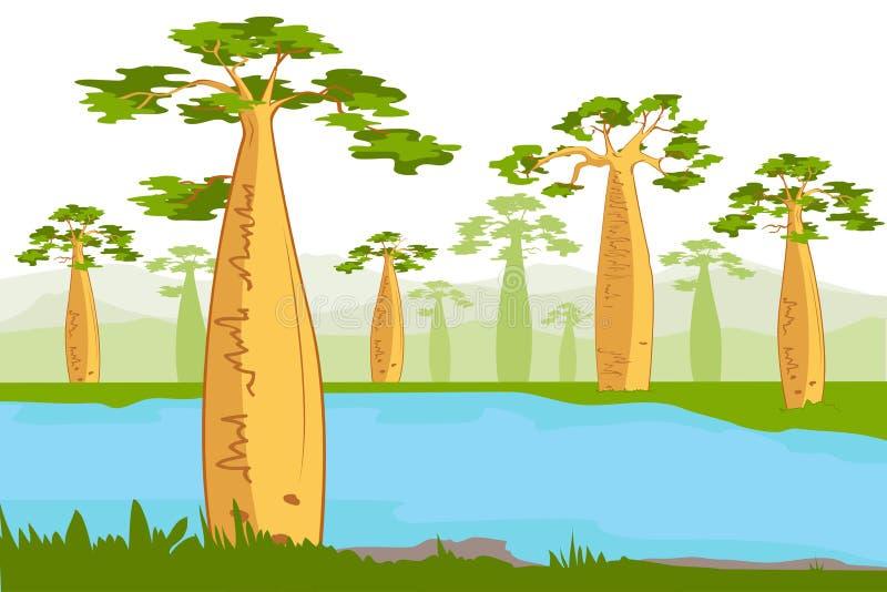 Baobabs cerca del río Siluetas hermosas del árbol del baobab ilustración del vector