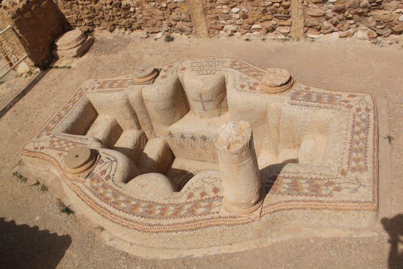 baptysterium sufetula obrazy royalty free