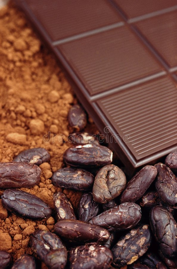 Bar of chocolate, cocoa beans , cocoa powder. Detail stock photography