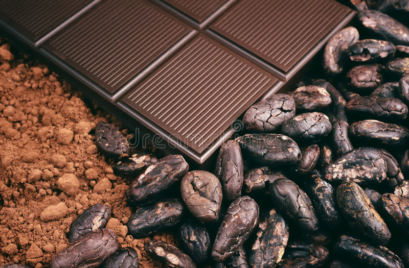 Bar of chocolate, cocoa beans , cocoa powder. Detail stock image
