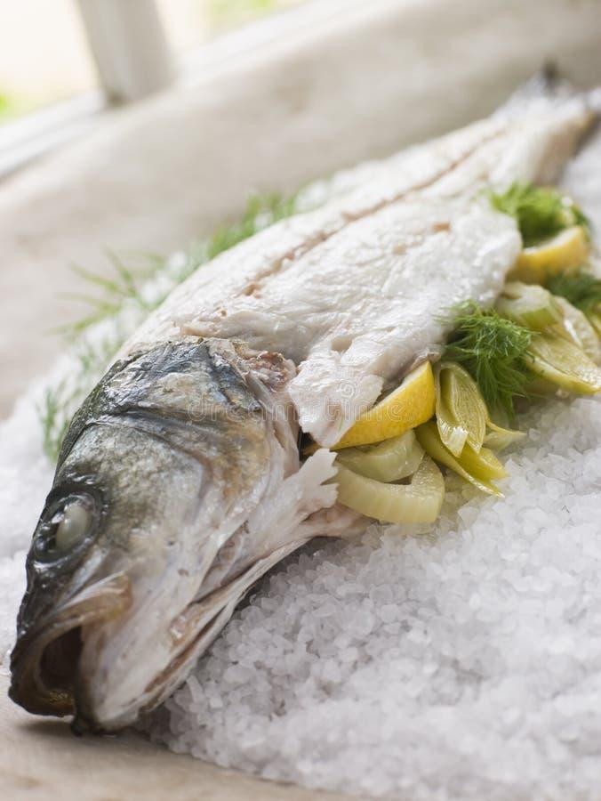 bar de mer de sel rôti par croûte entier photos stock