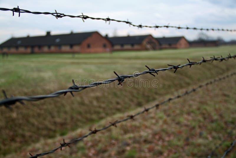 Baracker bak den försåg med en hulling - binda på Auschwitz - Birkenau koncentrationsläger arkivfoton