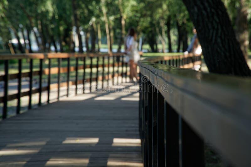 Barandilla de madera en parque público con el banco del césped y árbol verde, lugar para la relajación foto de archivo libre de regalías