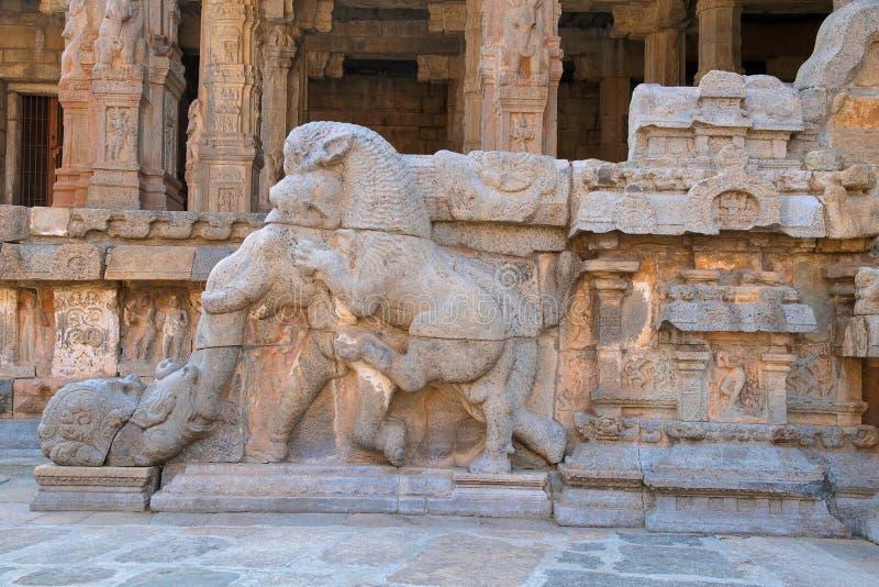 Barandilla que muestra un león feroz que salta en el elefante con encrespado encima del tronco, mandapa del noroeste, templo de A imagen de archivo
