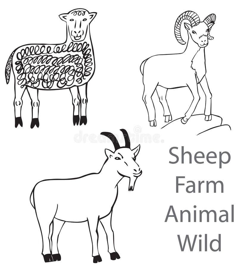 Barani zwierzęta gospodarskie Dziki ilustracji