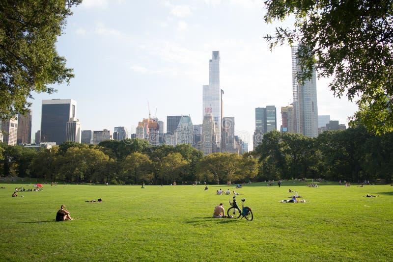 Barania łąka w central park, Manhattan, Miasto Nowy Jork zdjęcie stock