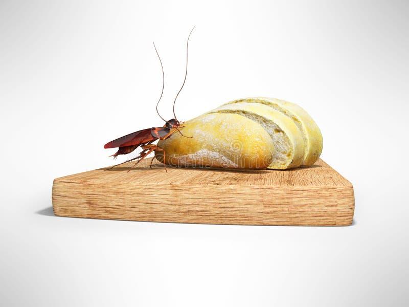A barata come o pão branco 3d para render no fundo cinzento com sombra ilustração do vetor