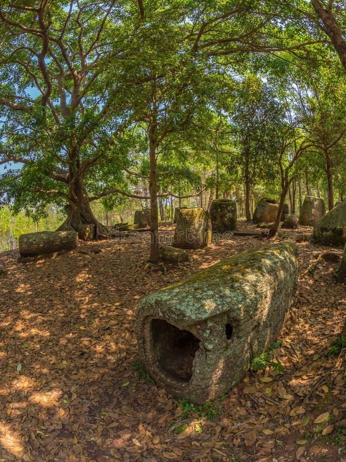 Barattoli giganti della pietra di età del ferro in radura boscosa Plateau di Xiangkhoang, fotografie stock libere da diritti