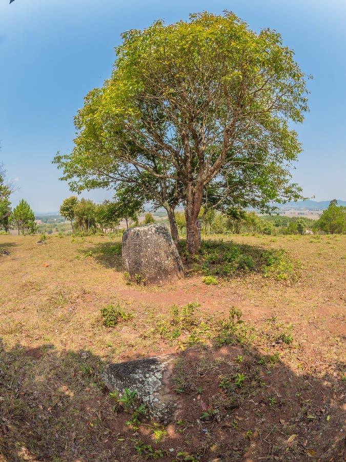 Barattoli giganti della pietra di età del ferro sulla collina boscosa Plateau di Xiangkhoang, L immagine stock