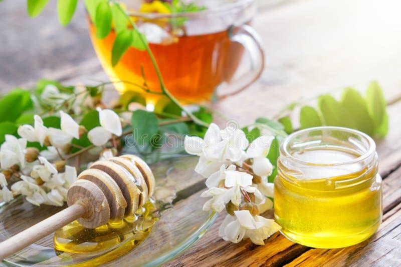 Barattolo del miele dei fiori dell'albero dell'acacia, merlo acquaiolo e tazza di tisana sana immagini stock