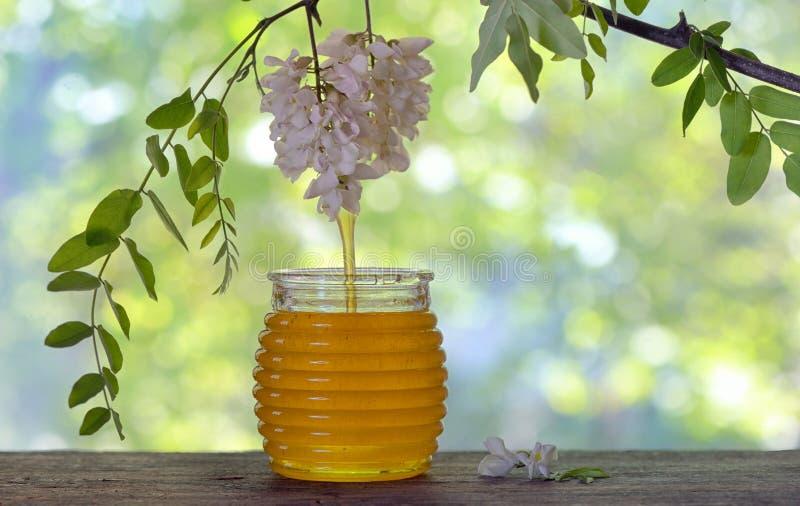 Barattolo di miele con i fiori dell'acacia fotografie stock