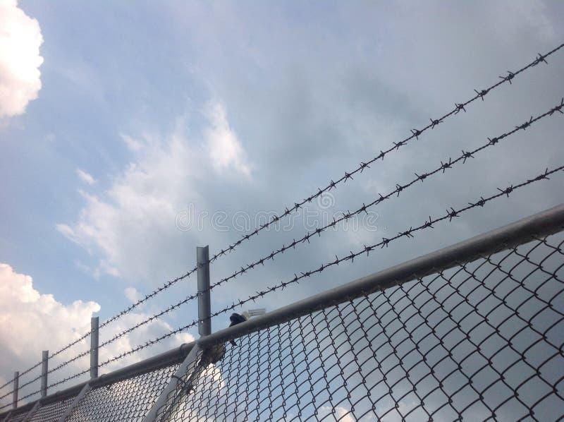 Barb-Draht und blauer Himmel lizenzfreies stockbild