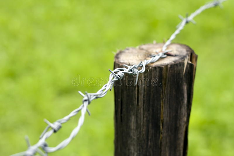 Download Barb wire stock photo. Image of wire, detail, pole, fence - 15497204