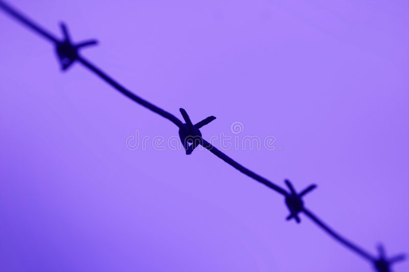 Download Barb wire stock image. Image of close, defense, camp, guard - 7341893