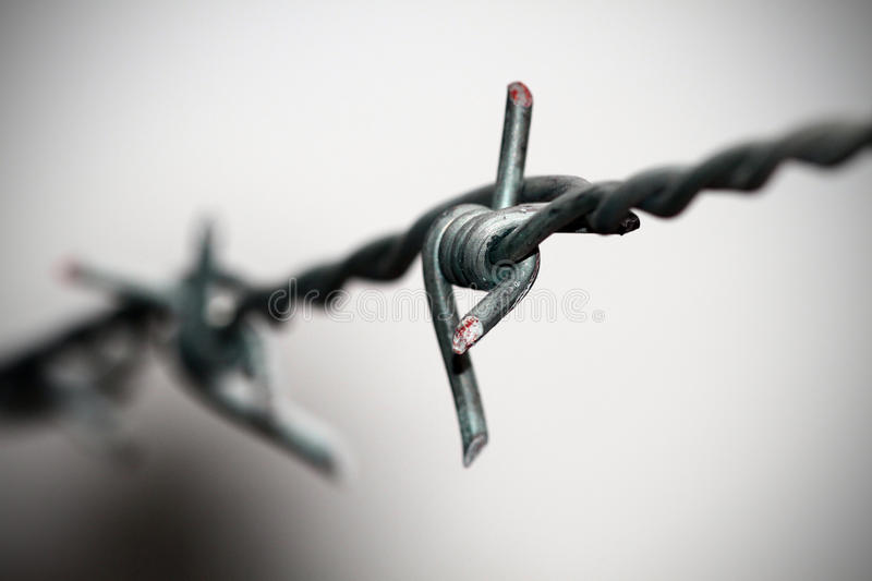 Barb wire closeup stock photography