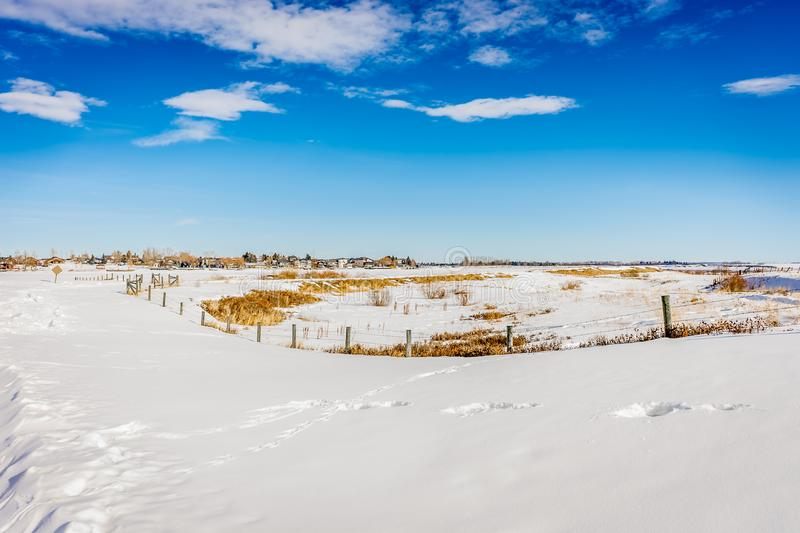 A barb wire fence in a snow covered field royalty free stock image
