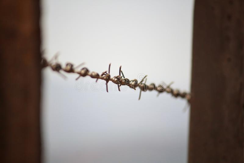 Barb wire fencing for boundary. A closeup of barb wire fence used for boundary for division of a property royalty free stock photos