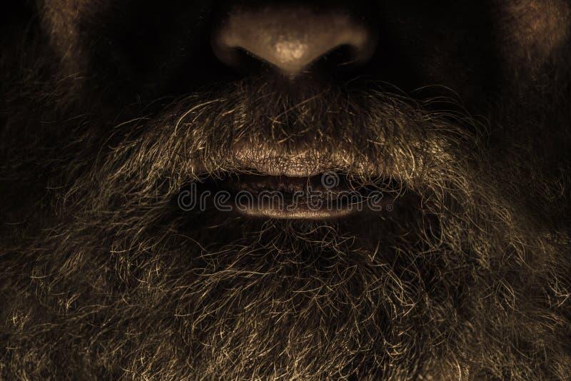 Barba fotografía de archivo