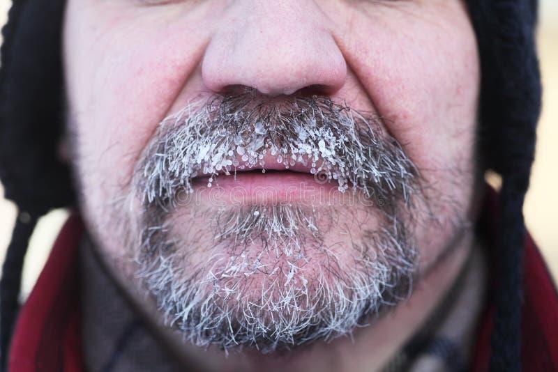 Barba e bigode cinzentos congelados fotografia de stock royalty free