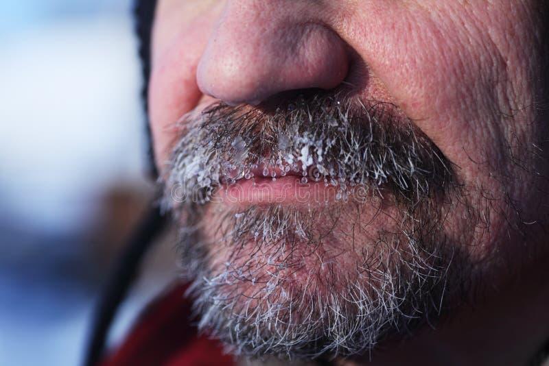 Barba e bigode cinzentos congelados foto de stock royalty free