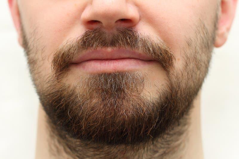 Barba y bigote imagen de archivo libre de regalías