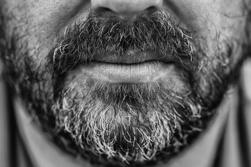 Barba y bigote Graying fotografía de archivo libre de regalías