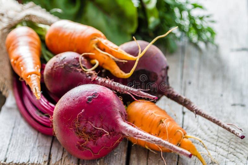 Barbabietola e carota crude immagine stock