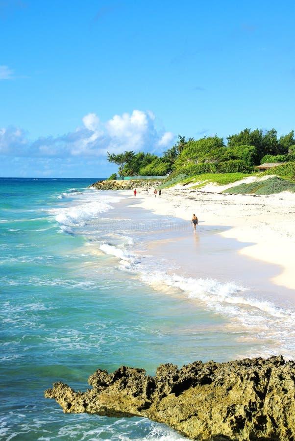 Barbados fotografia royalty free
