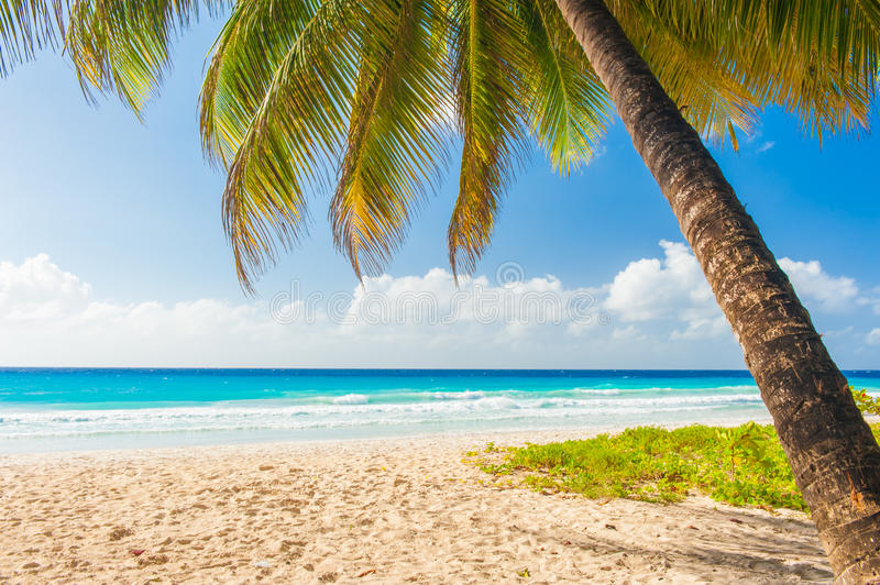barbados images stock