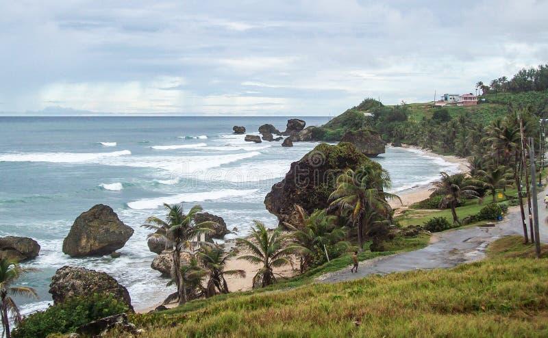 Barbados, costa este, rugoso y intacto fotografía de archivo libre de regalías