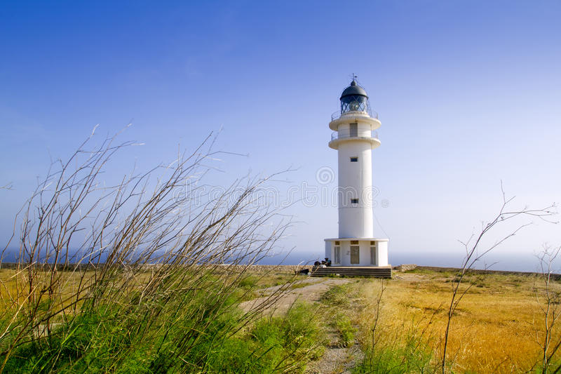 Barbaria cape lighthouse Formentera meadow stock photo