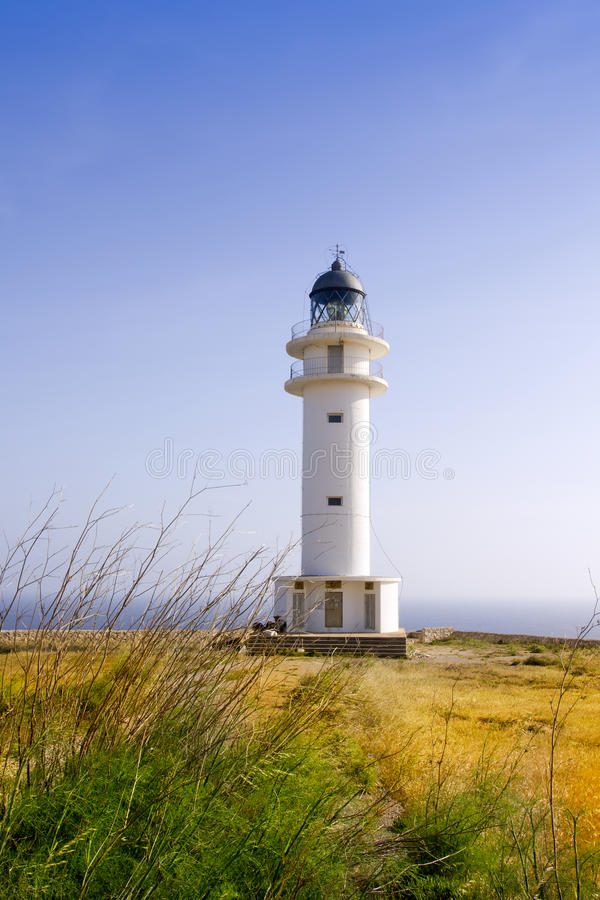 Barbaria Lighthouse Formentera Balearic Island. Barbaria Lighthouse cape Formentera Balearic Islands in golden grass meadow blue sky stock photo