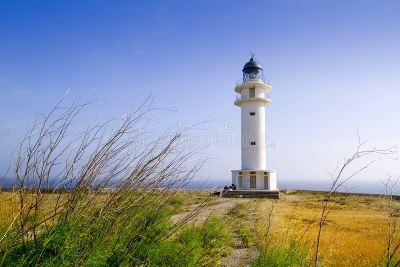 barbaria przylądka Formentera latarni morskiej łąka zdjęcie stock