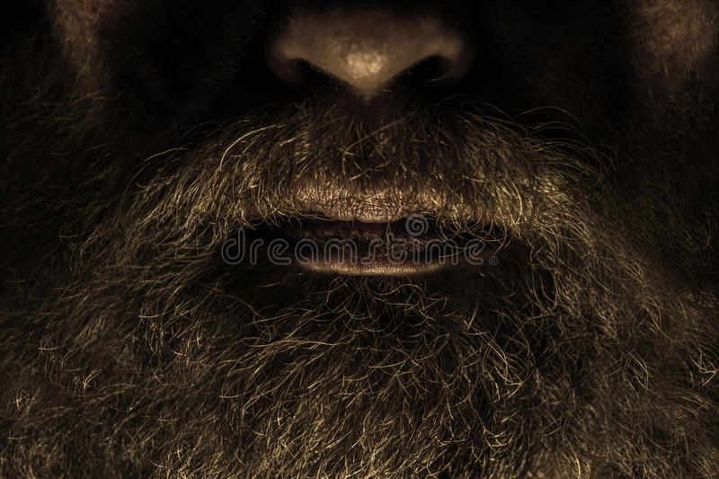 Barbe photographie stock