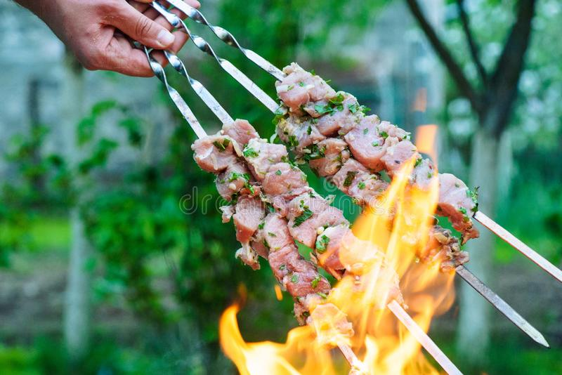 Barbecue. Background, d, barbeque, bbq, beef, burn, charcoal, chicken, coals, concept, cook, cooking, cookout, delicious, dinner, family, fire, food, garden royalty free stock photography