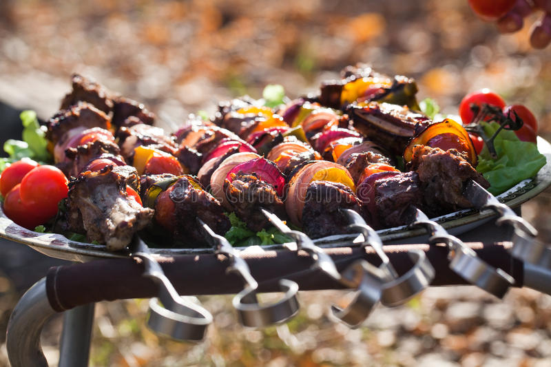 Download Barbecue stock image. Image of barbecue, closeup, lunch - 25344991